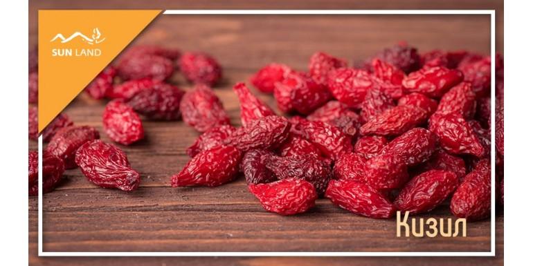 Кизил: красная ягода для крепкого здоровья