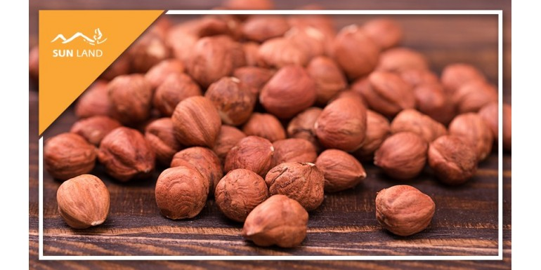 Фундук: орех, дающий силы, здоровье и счастье